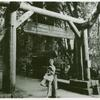 Woman posing with book by the entrance to Muir Woods National Monument]