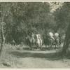 Men on horseback through bridle trails of Arroyo Seco]
