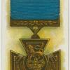 Victoria Cross. (Navy.)