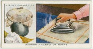 Ridding a carpet of moths.