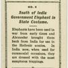 South of India, government elephant in state costume.