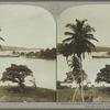 Harbor, showing the filibustering S. S. Bermuda, Port Antonio, Jamaica.