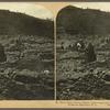 St. Pierre, Mount Pelée's ill-fated victim - ruins and vocalnic ashes entombing her perished thousands, Martinique, W. I.