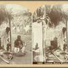 Jamaica, Native Women Preparing a Meal.