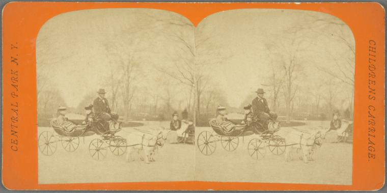 Children's Carriage -- Central Park, N.Y.