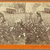 "Cotton Picking"" in Ga."