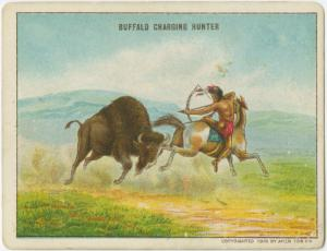 Buffalo charging hunter.