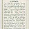 Kildare, Cill-dara, the church of the oak.