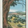 Rush, Ros-eó, the peninsula of the yew trees.