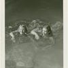 Amusements - Aquacade - Two swimmers in water