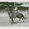 Amusements - Performers and Personalities - Robinson, Bill - On horseback