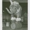 Amusements - Shows and Attractions - Frank Buck's Jungleland - Elephants - Standing on barrel