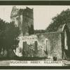Muckross Abbey, Killarney.