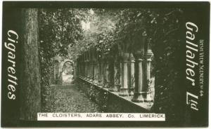The Cloisters, Adare Abbey, Co. Limerick.
