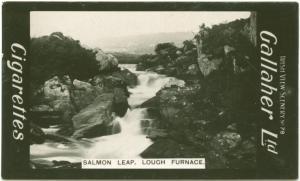 Salmon Leap, Lough Furnace.