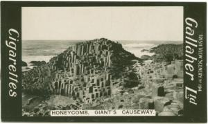 Honeycomb, Giant's Causeway.