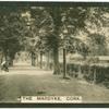 The Mardyke, Cork.