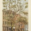 The varian tree in Broadway, betw. 26th & 27th Sts. 1864