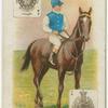 Jockey: J. Clark, Col: Mr. Herbert Rhodes.