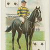 Jockey: J. Reiff, Col.: Mr. G. Bower Ismay.