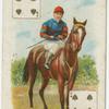 Jockey: G. Stern, Col: Mr. W.J. Raphael.