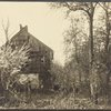 Apple blossoms, forsythia, old cabin on top of a hill in West Hills, L.I.