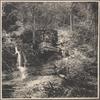 Bushkills Falls, Sull. Co., N.Y.