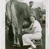 Contests - Milkmaid - Winner milking cow