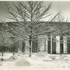 Fairgrounds - Snow - Trees in court of Medicine and Public Health Building