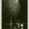 Fireworks - Advertisement