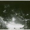 Fireworks - Liberty Lake display