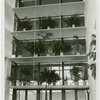 New York World's Fair - National Advisory Committees - Building - Plants inside