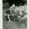 Special Weeks - Tulip Week - Girl in costume with tulips