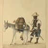"[(""Aguador"") Man driving a donkey carrying water casks.]"