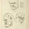 Three studies of a man's head and beard