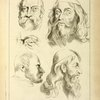 Four studies of men's heads, and an eye