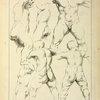 Studies of male torsos