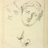Two human female faces and two noses--one human, animal