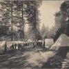Camp at Wawona