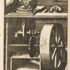 Fig. XVI. Pateomylos, frumentarius,