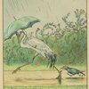 Crane and crow with an umbrella.]