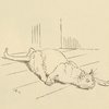 [The cat that killed the rat.]
