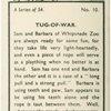 Tug-of-war.
