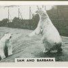 Sam and Barbara.