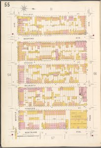 Brooklyn V. 3, Plate No. 55 [Map bounded by Skillman St., Park Ave., Nostrand Ave., Myrtle Ave.]