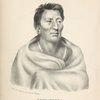 Ongpatonga, [Big Elk] Chief of the Omawhaws