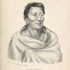 Ongpatonga, [Big Elk] Chief of the Omawhaws