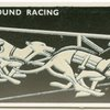 Greyhound Racing.