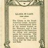 Llama in Cart.