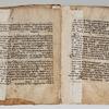 Folios 9v-10r: Genesis 5:32-6:20